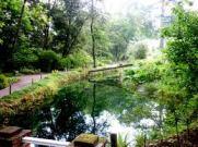 Campamento en el Jardín Botánico Gijón
