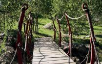 Campamento Jardín Botánico Gijón